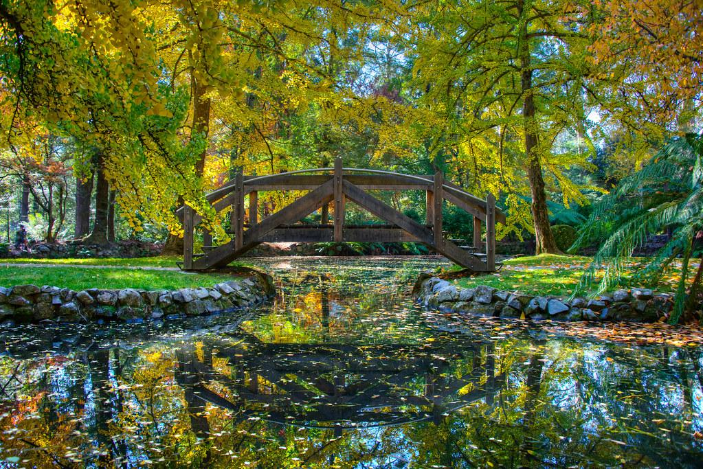 Alfred Nicholas Gardens in Kallista,Victoria | Autumn at Alf… | Flickr
