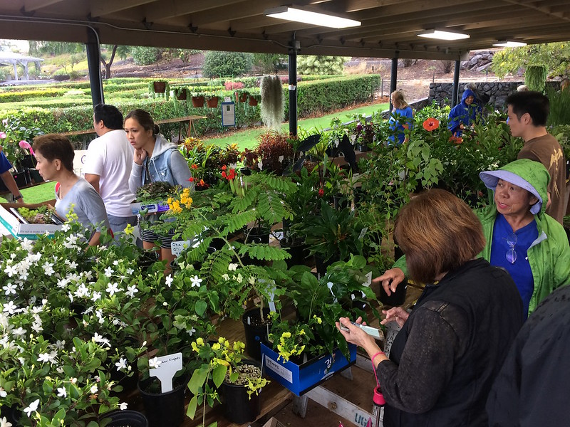 Oahu Urban Garden Center Second Saturday 2/11/17
