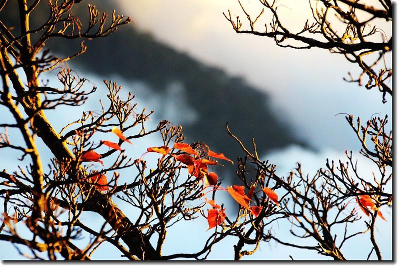 北大武山登山步道3.8K光明頂的黃昏 3