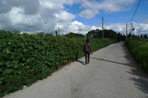 Walking to Cartuja Monastery - Jerez de la Frontera, Spain