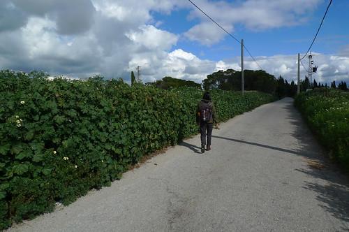 Walking to Cartuja Monastery - Jerez de la Frontera, Spain