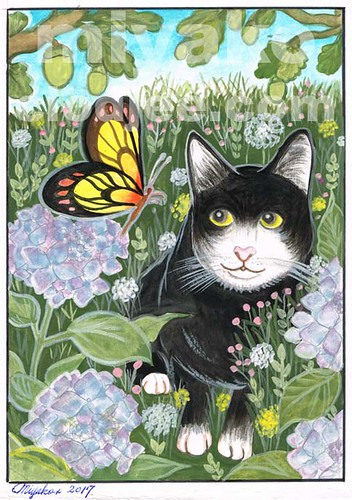 Black cat and butterfly with hydrangea under an oak