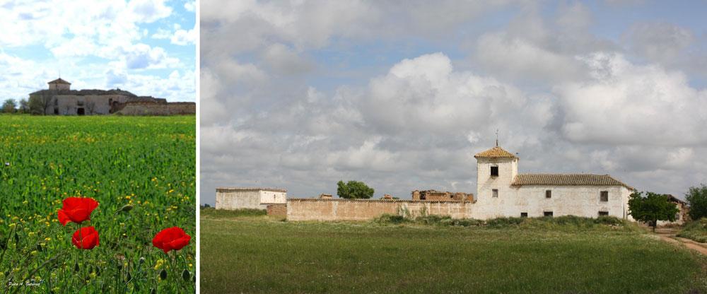 10-Vista-de-la-Venta-de-Borondo-desde-el-antiguo-camino-Almagro-Murcia.-Mayo-2016-Autor-Pedro-A.-Gutierrez + david cejudo
