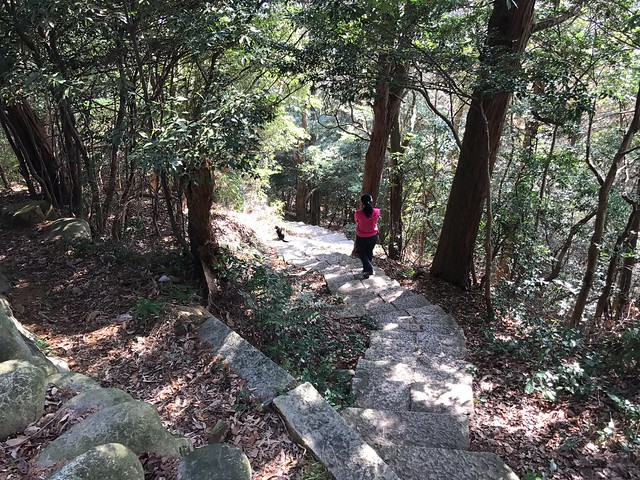 尾張富士 句碑のみちルート 石段