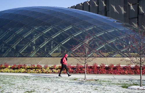 Mansueto Library - fall color and early snow | by University of Chicago Library