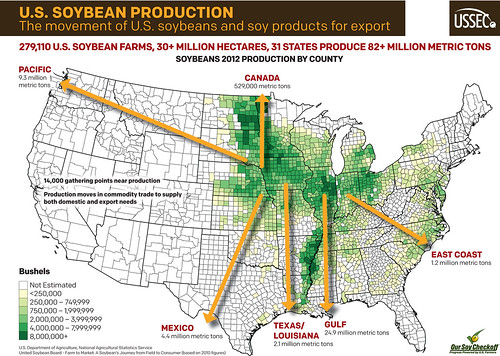 Movement of US Soybeans Infographic | by UnitedSoybeanBoard