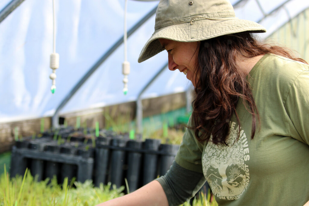 Christina McKnew manages the Return of the Natives greenhouse on the California State University, Monterey Bay campus.