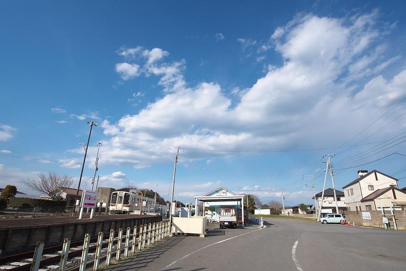 春の青春18きっぷの旅 茨城県の国営ひたち海浜公園