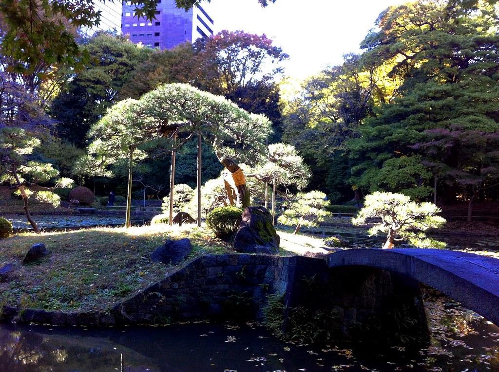 Koishikawa Korakuen Garden_07