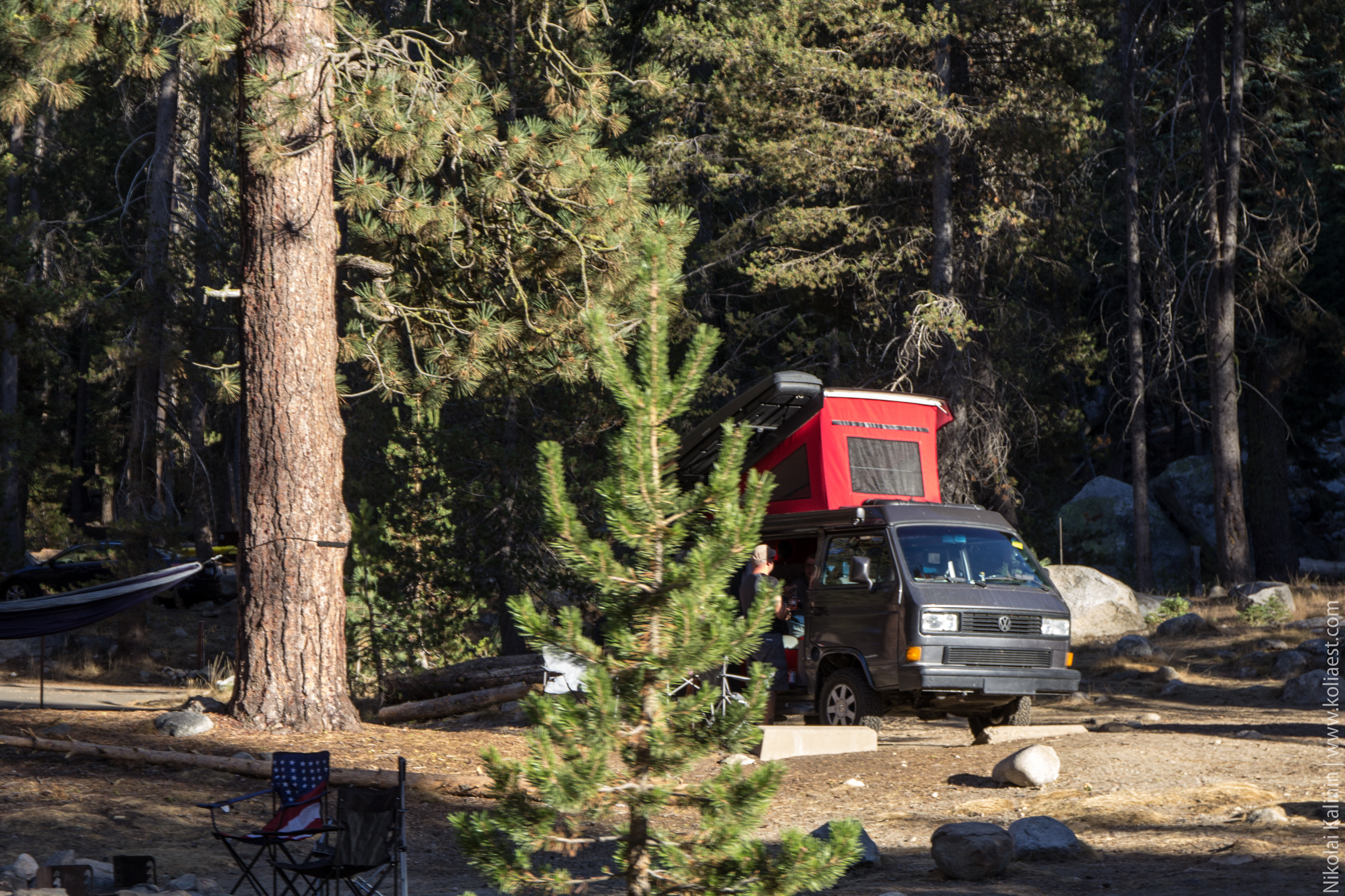Sequoia-51