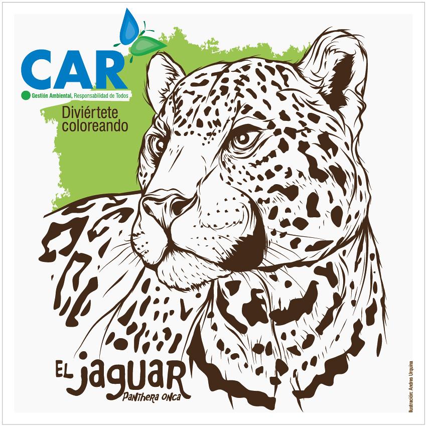 Diviértete coloreando - El jaguar, yaguar o yaguareté (Pan… | Flickr