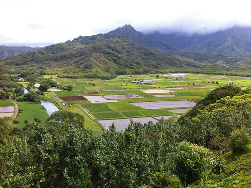 Hanalei Valley Overlook | by mariamjaan