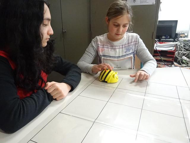 Programmeren met de Beebot in L5