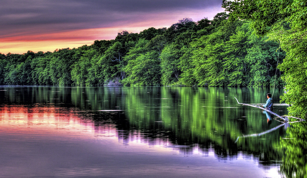 Image result for reflective waters