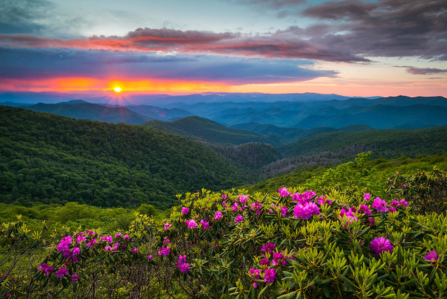 Dave Allen Photography / Shutterstock