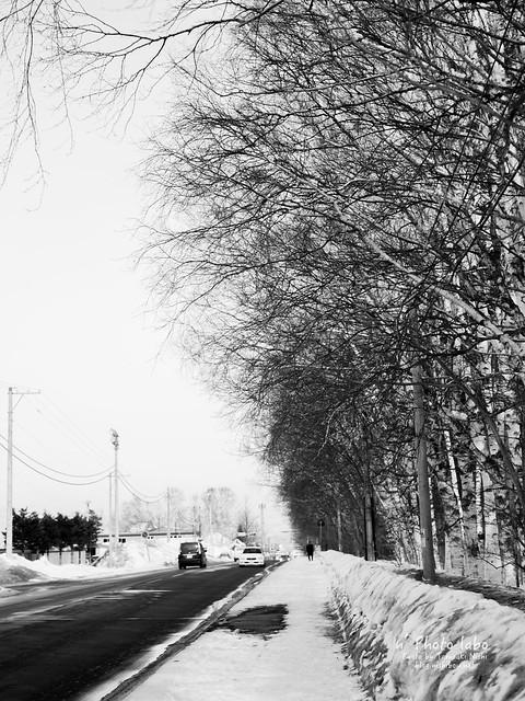 道道216