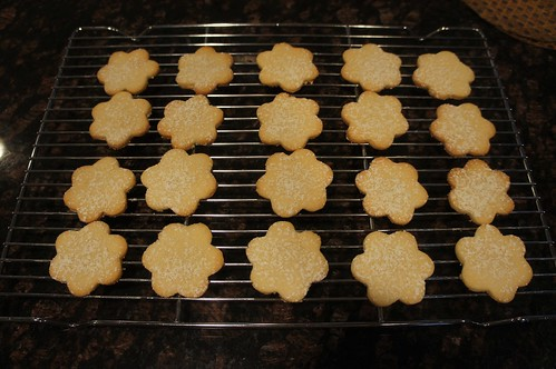 At Home: Sugar Cookies