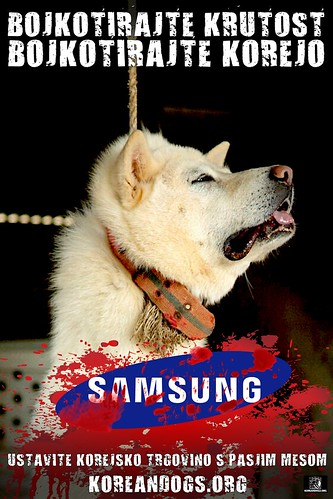 Slovenian - BOYCOTT CRUELTY | by Koreandogs