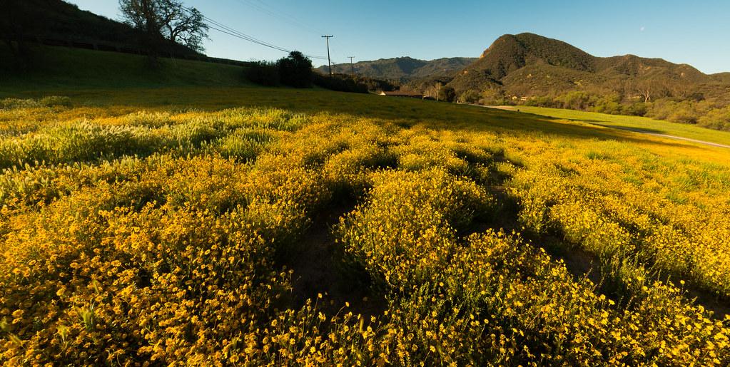 NPS - Paramount Ranch