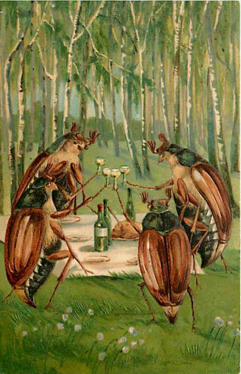 Beetles Toasting Wine Picnic in Woods Vintage Postcard 1909