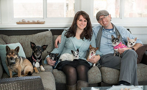 woman-brings-home-senior-dog-24-hours-jay-z-12