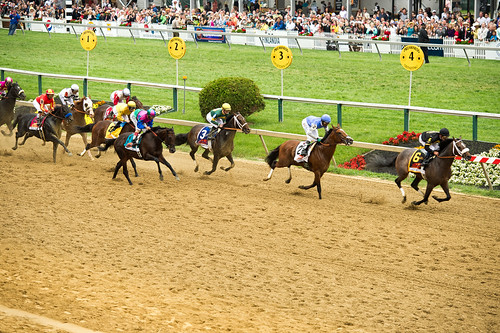 The 138th Annual Preakness
