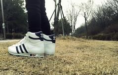 adidas jogging high 2