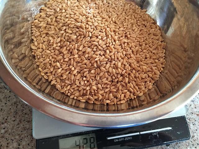 Whole grain = 428g