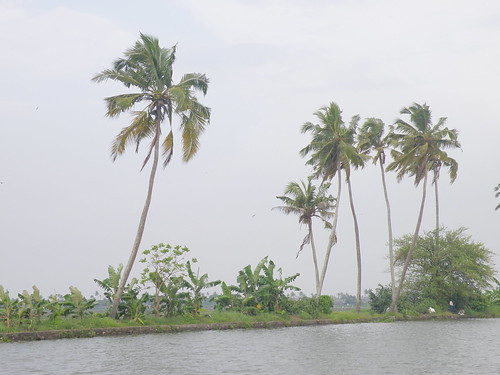 Alleppey Backwaters | by Sajan Mullappally