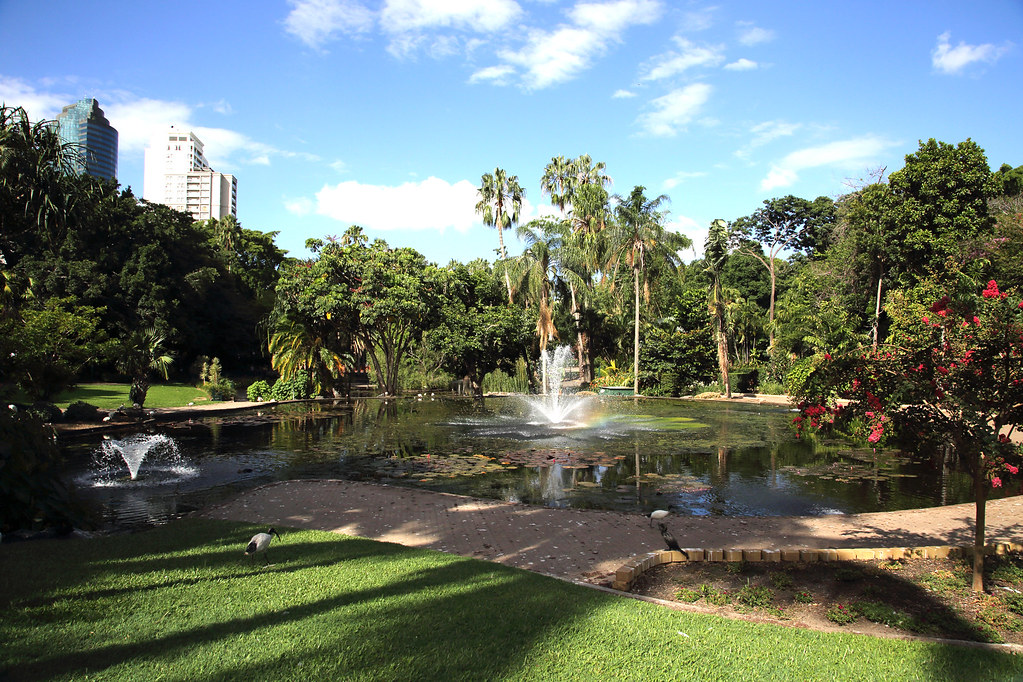City Botanic Garden brisbane