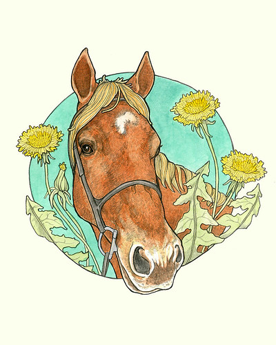 Horse Portrait: Mo | by sarah draws things