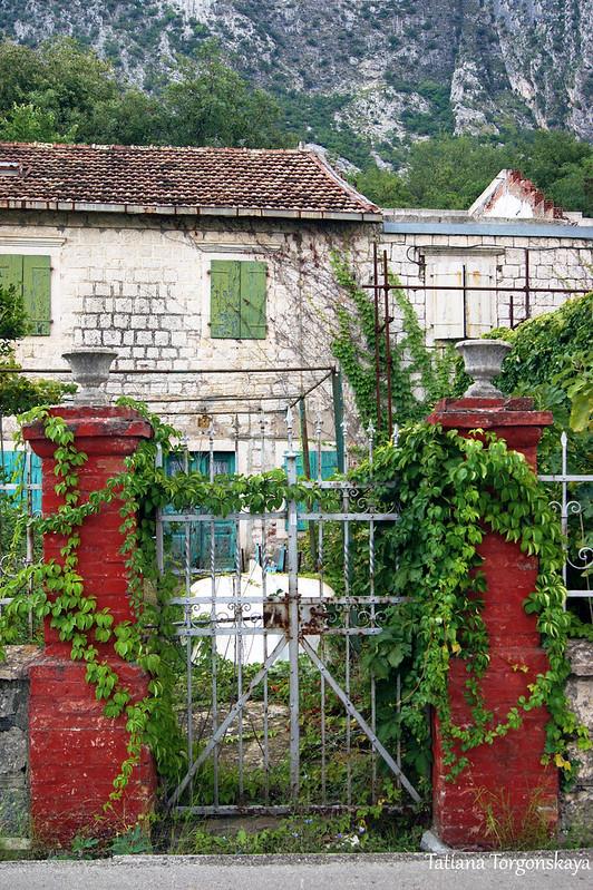 Старый дом в Доброте