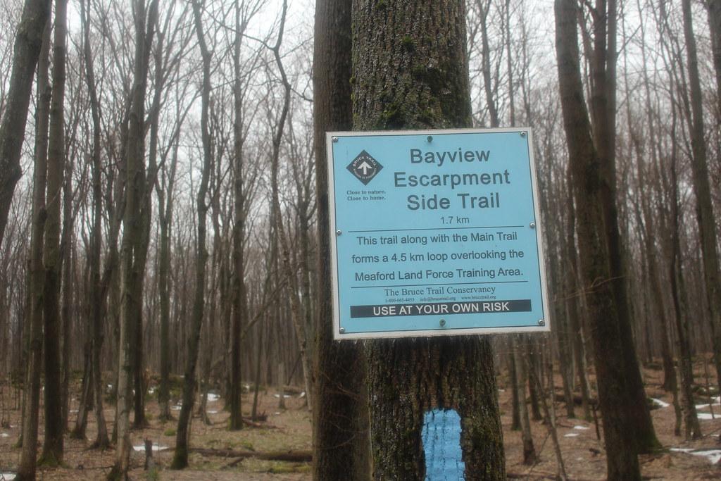 Bayview Escarpment 09
