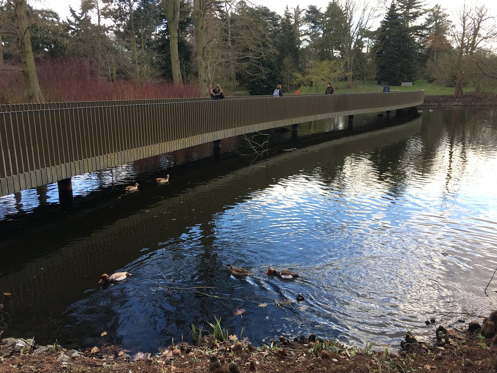 Sackler Crossing at Kew Gardens