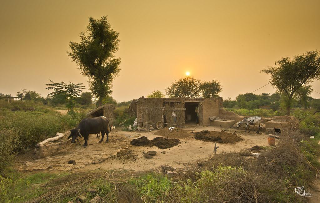 Image result for pakistan village
