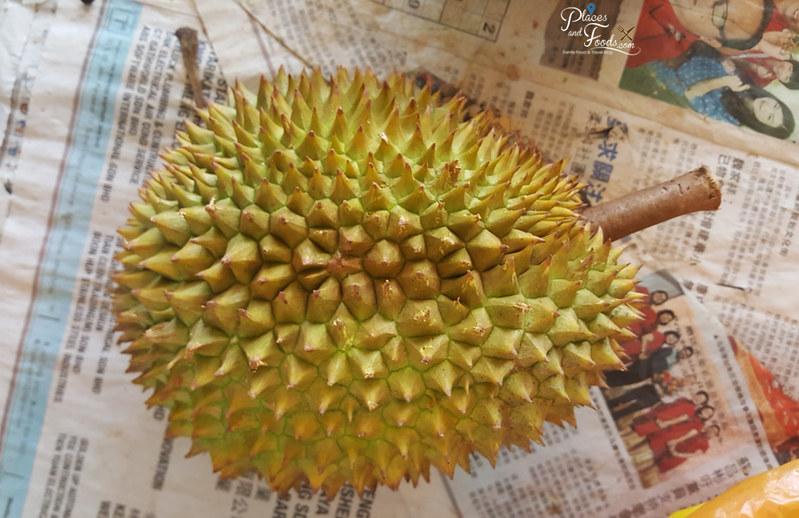 durian tawa