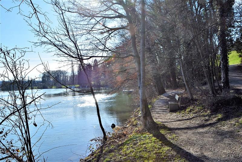 River Aar Walk 10.03 (5)