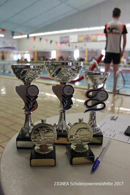 2017 ZIGNEA Scholenzwemestafette 2017
