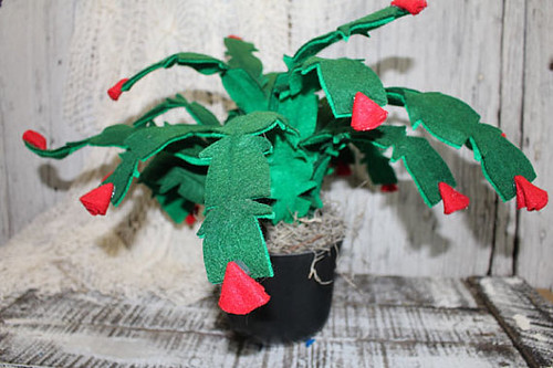 The Felt Cactus Company