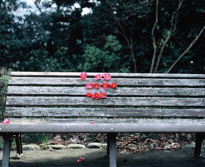 Happiness Bench