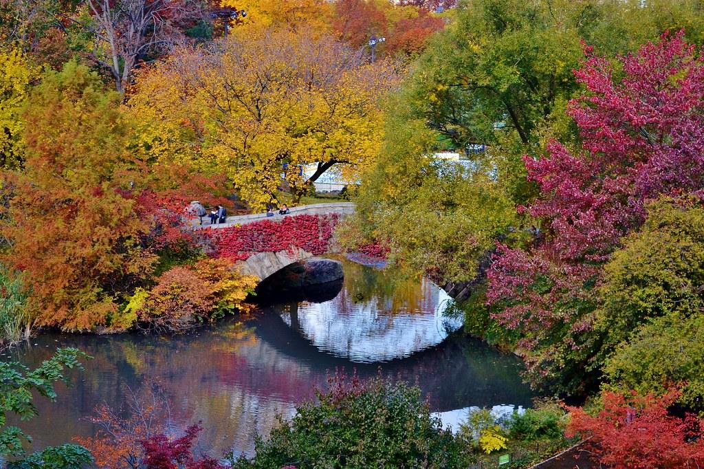 Central Park-Gapstow Bridge, 11.02.13