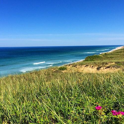 Cape Cod National Sea Shore: Cape Cod National Seashore 🌊 #nati