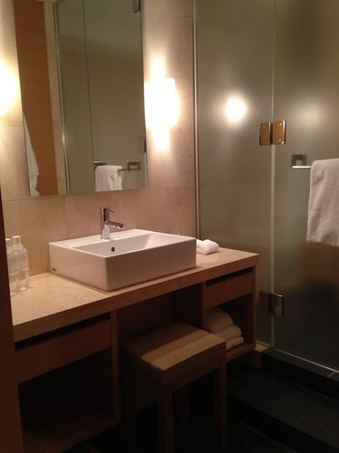 Hotel Regency New York
