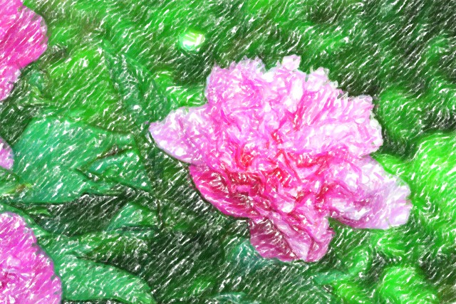 flowers (56)-crayon