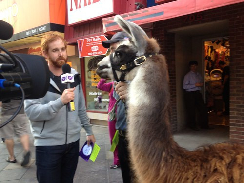 @CheetoSantino on the #Denver streets. #Yontheroad | by Yahoo On the Road