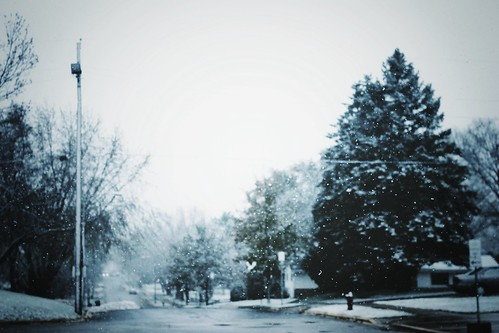 First Snow | by briarose7