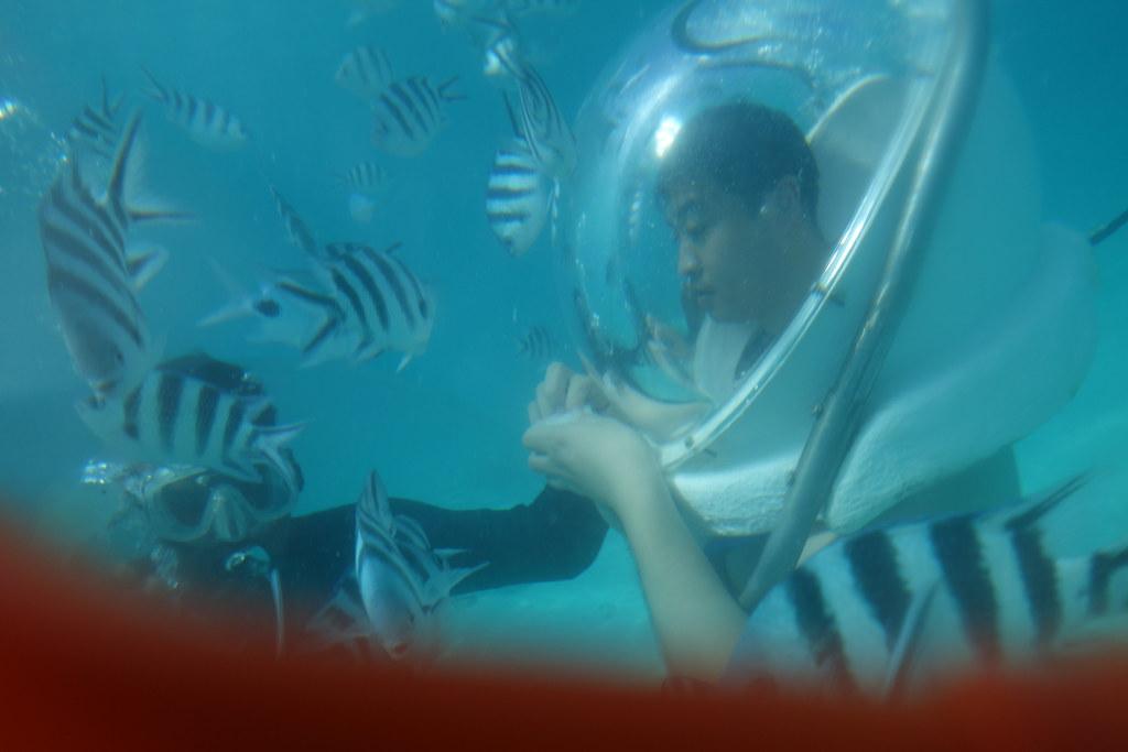 Sea Walk mauritius water sports