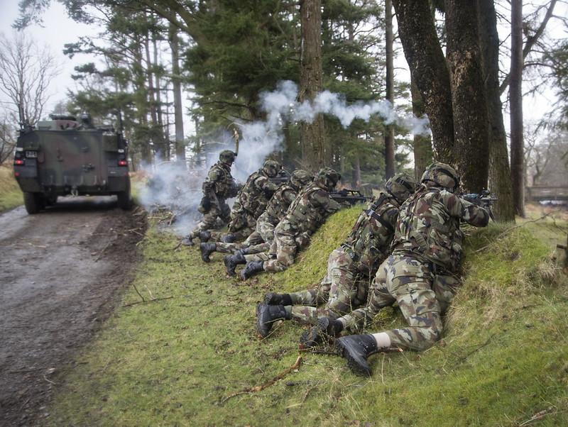 Armée Irlandaise/Irish Armed Forces - Page 2 32463704604_d6b560928c_c