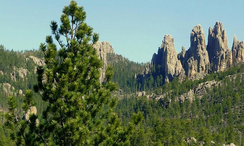 4000_20005_Needles_Highway_Black_Hills_lg