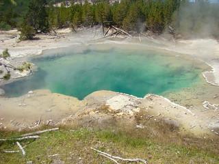 46 Norris - Emerald spring